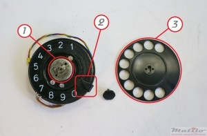 Dial anatomy front